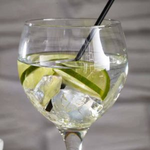 Stylepoint verres gin tonic