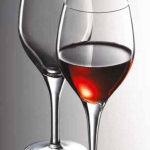 Stylepoint verres à vins primeur