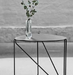 Linddna table cameleon